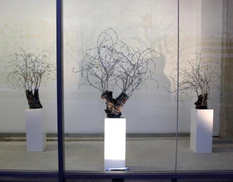 """Vue d'installation de la forêt d'oliviers de Katanani lors de l'exposition """"Le Sens de la Peine"""" à l'espace d'art de la Terrasse de Nanterre début 2016."""